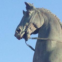 Sauvez au moins le cheval !!!